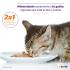 2×1 en alimento Purina Pro Plan Kitten en Maskota