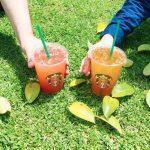 En Starbucks 2×1 en bebidas refrescantes a partir de las 3:00 PM del 25 de julio al 7 de agosto