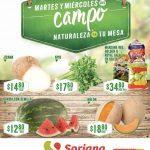 Ofertas Soriana Martes y Miércoles del Campo 21 y 22 de abril 2020