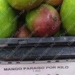 Ofertas Tianguis Bodega Aurrerá en frutas y verduras 18 al 24 de junio 2021