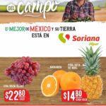 Ofertas Soriana Martes y Miércoles del Campo 21 y 22 de septiembre de 2021